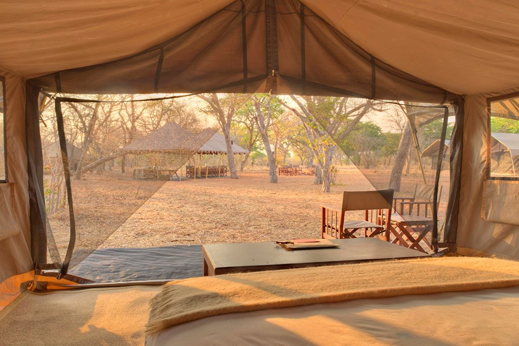 Chobe Under The Tent